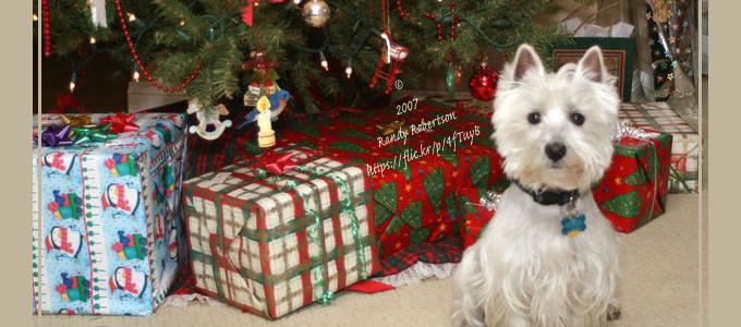 Boże Narodzenie zdjęcie